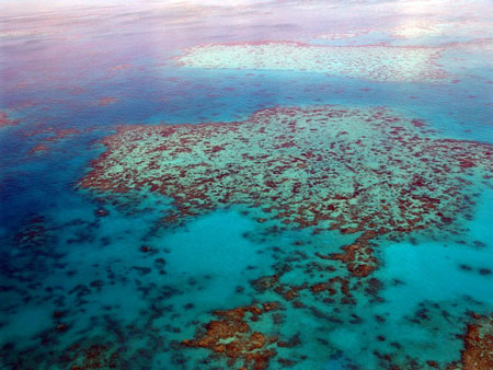 great-barrier-reef-450